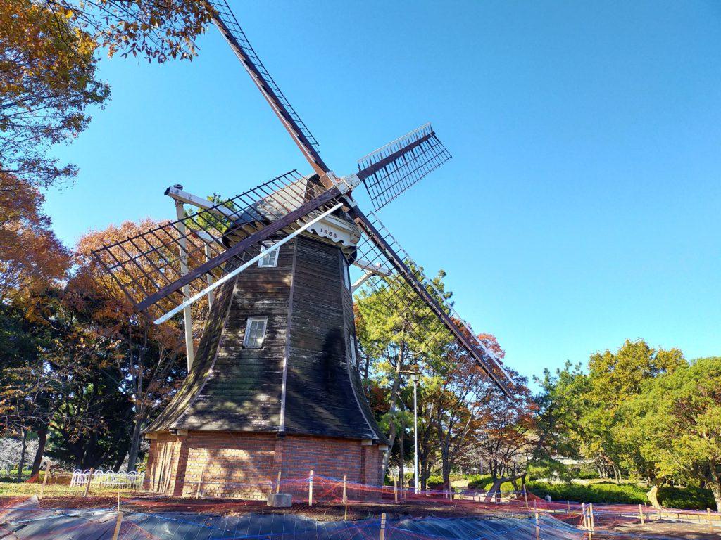 名城公園の紅葉と風車