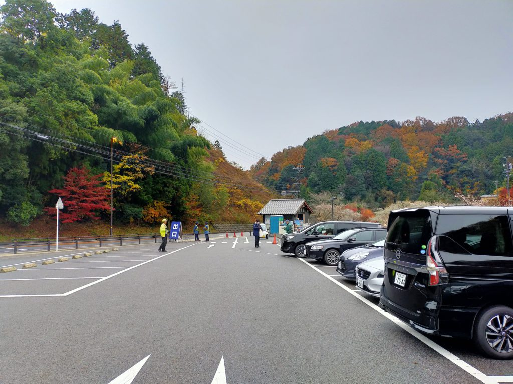 四季桜まつり 駐車場
